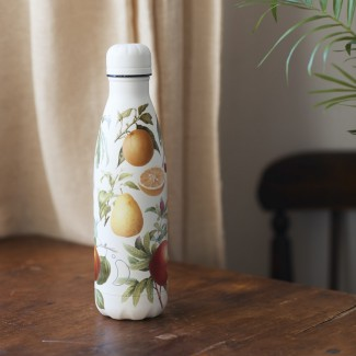BOUTEILLE CHILLY'S 500ML BOTANICAL FRUIT