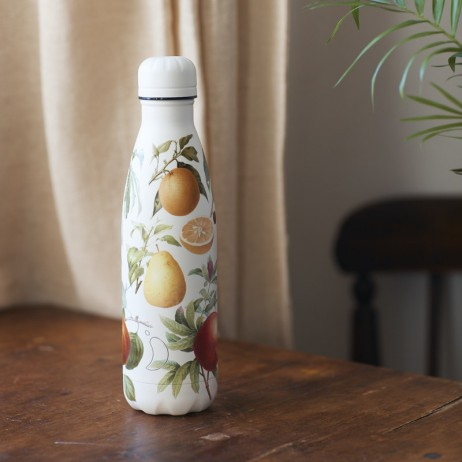 BOUTEILLE CHILLY'S 500ML BOTANICAL FRUIT - CHILLY'S